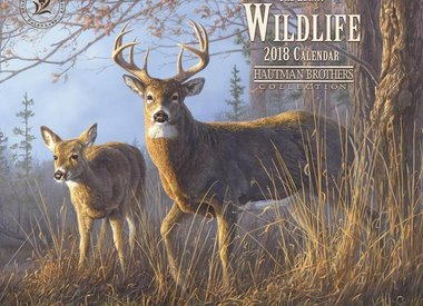 Wildlife / Buitenleven
