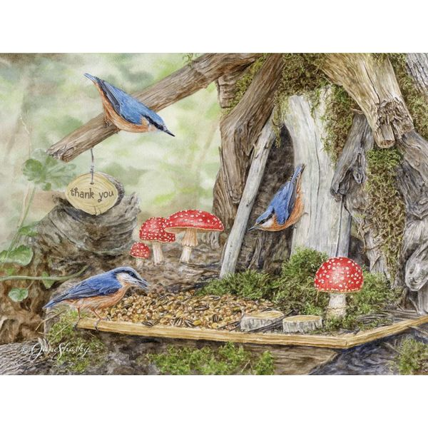 LANG FAIRY GARDEN Boxed Note Cards