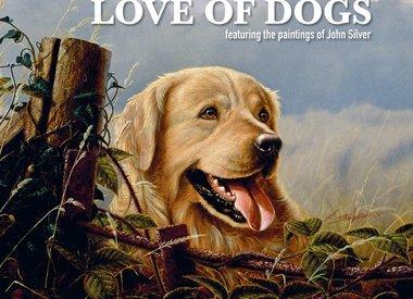 Dog's / Pup's