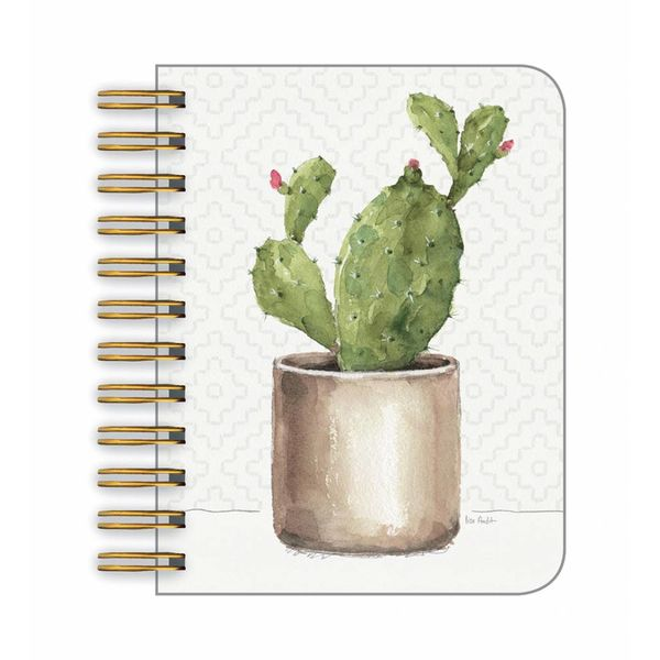 Legacy POTTED CACTUS  little spiral book
