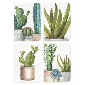 Legacy Cactus Trio