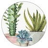 CACTUS TRIO 6 round corc backed coasters