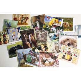Assortiment Note Cards