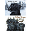 Winter Labs assorted Holiday Cards
