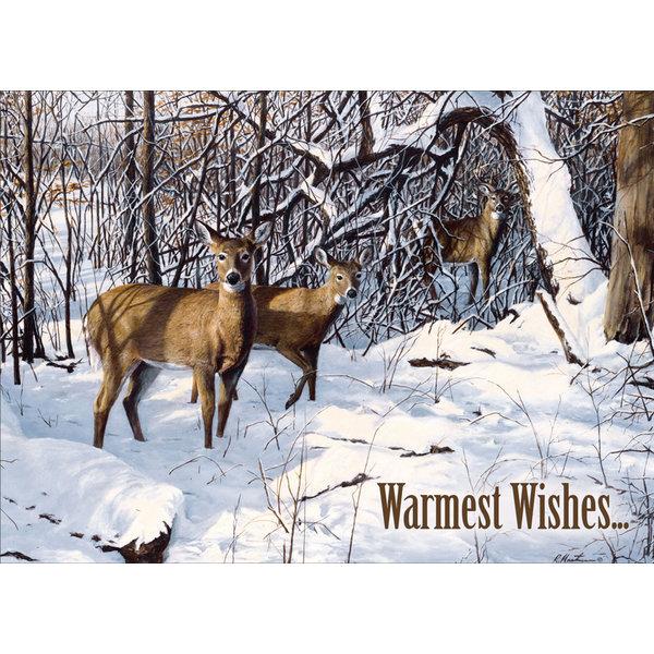 Legacy Wildlife Winter assorti Kerstkaarten.