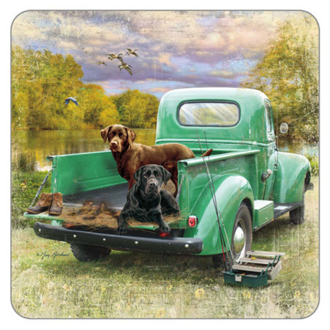 Pick up and Dogs