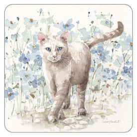 Legacy Boho Cat