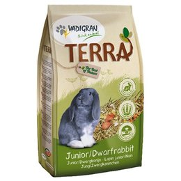 Vadigran Terra Dwarf Rabbit and Junior