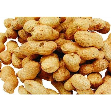 Erdnüsse mit Schalep (10 kg)