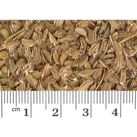 Wortelzaad (1 kg)