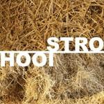 Stro en Hooi