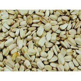 Vadigran Blanc graines de tournesol (10 kg)