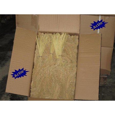 Chinese Trosgierst Geel (doos 15 kg)