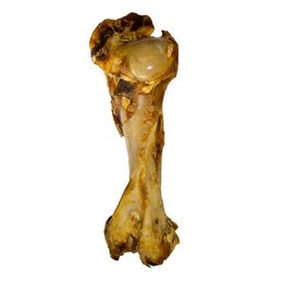 Voskes Beef Bone XL