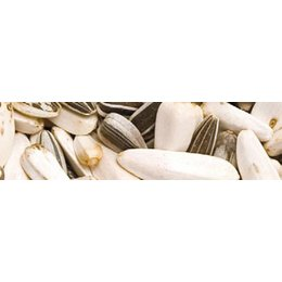 Teurlings 237 - Perroquets base (10 kg)