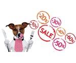 Offres pour les chiens