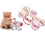Offres Boutique pour Chats