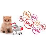 Offers Cat shop