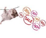 Offers Rodent Shop