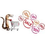 Offres Boutique Reptiles