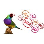 Offers Birdshop
