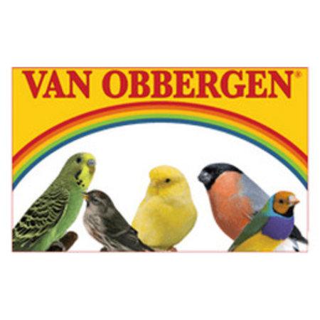 van Obbergen Large Parakeet