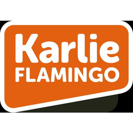 Flamingo Speelgoed hout 3 elementen zwaar