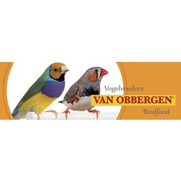 van Obbergen Small Parakeets