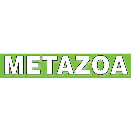 Metazoa Esparcette Grob