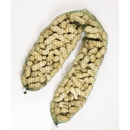 Erdnüsse im Netz