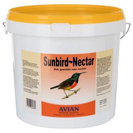 Avian Nectar Sunbird