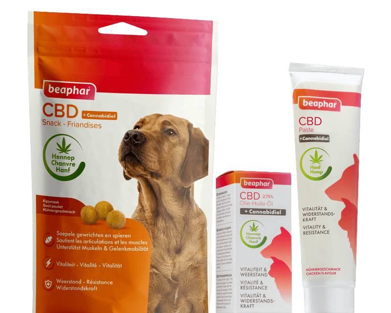 Cannabidiol, goed voor lichaam en geest van Hond en Kat