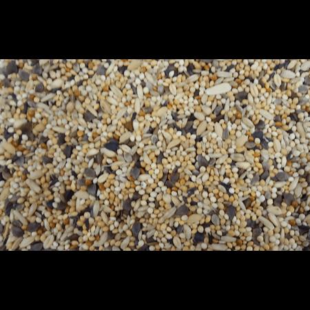 Agaporniden mengeling (2,5 kg)