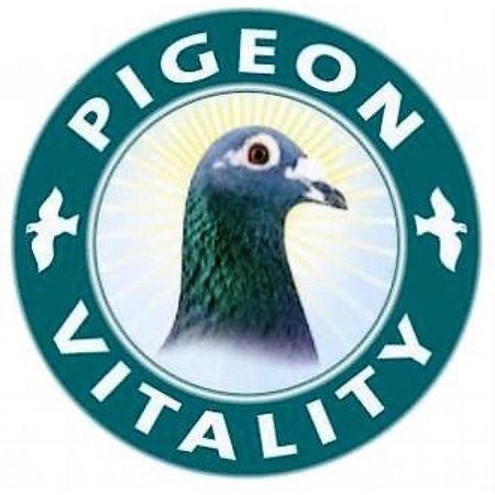 Pigeon Vitality Oxy - B (400 gr)