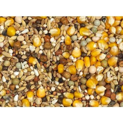 Vanrobaeys Mélange de mue avec du maïs Cribbs jaune (Nr. 6)