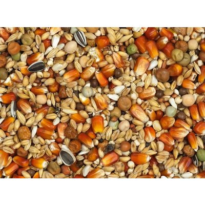 Vanrobaeys Rui Rode Cribbs maïs (Nr.17)