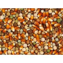 Vanrobaeys Mélange d'élevage avec du maïs rouge Français (Nr. 24)