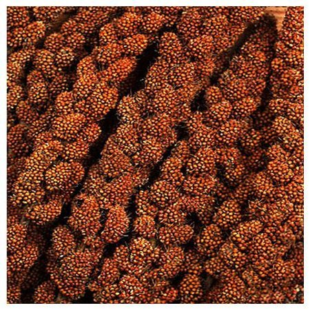 Chinese red millet (1 kg)