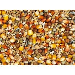 Vanrobaeys Mélange de mue avec du maïs Cribbs jaune/rouge (Nr. 5)