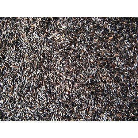 Graines de Niger (1kg)