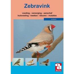 Das Zebra Finch