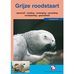 L'African Grey Parrot