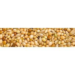 Teurlings 221 - Perruche standard (20 kg)