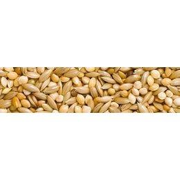 Teurlings 222 - Perruche spécial (20 kg)