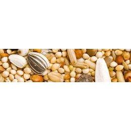 Teurlings 226 - Grande perruche euro (25 kg)