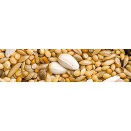 Teurlings 227 - Grande perruche spécial (20 kg)