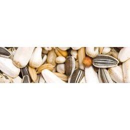 Teurlings 250 - Perroquet sans cacahuètes (15 kg)