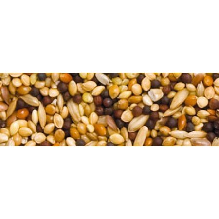 Teurlings 243 - Samen für Volierenvögel