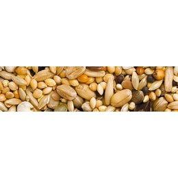 Teurlings 225 - Agaporniden Standard (2,5 kg)