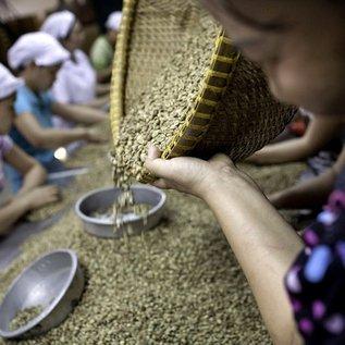 Gusto Vietnam Robusta - Espressobonen - 250 gram